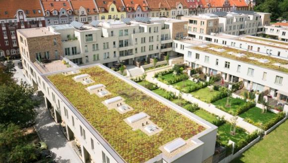 Zielone ogrody na dachu