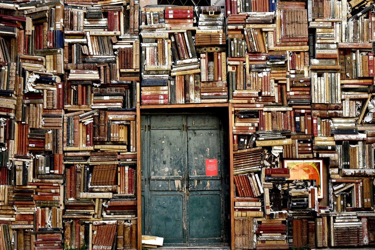 Domowa biblioteczka – jak ją urządzić, by czytanie było jeszcze przyjemniejsze?