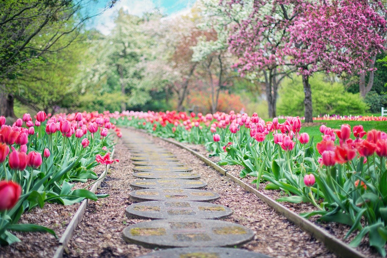 Przygotuj ogród na wiosnę z akcesoriami od Netto